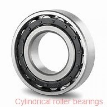 2.165 Inch | 55 Millimeter x 4.724 Inch | 120 Millimeter x 1.142 Inch | 29 Millimeter  NTN NJ311EC3  Cylindrical Roller Bearings